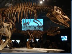 大恐竜展@国立科学博物館
