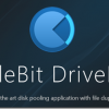Add-in: DrivePool の日本語化について